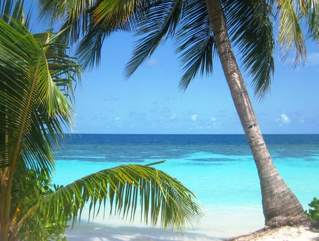 Velidhu Island, Maldives