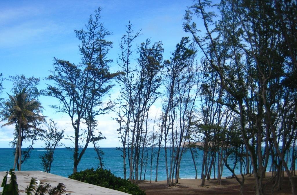 Waimanalo Beach, view from Waimanalo beach cottage house