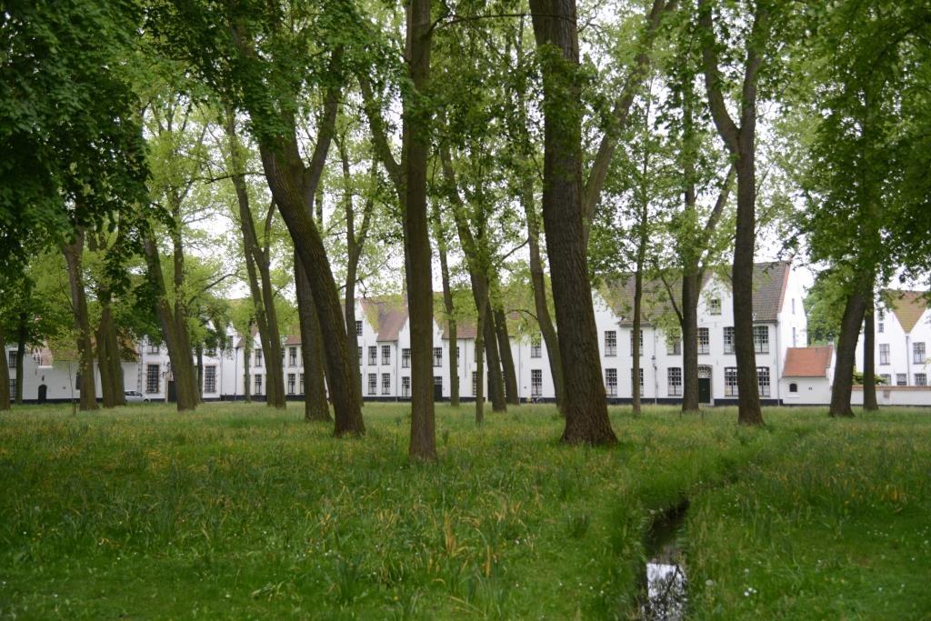 Bruges-Beguinage
