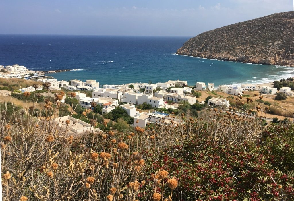 view of Apollonas from the mountains