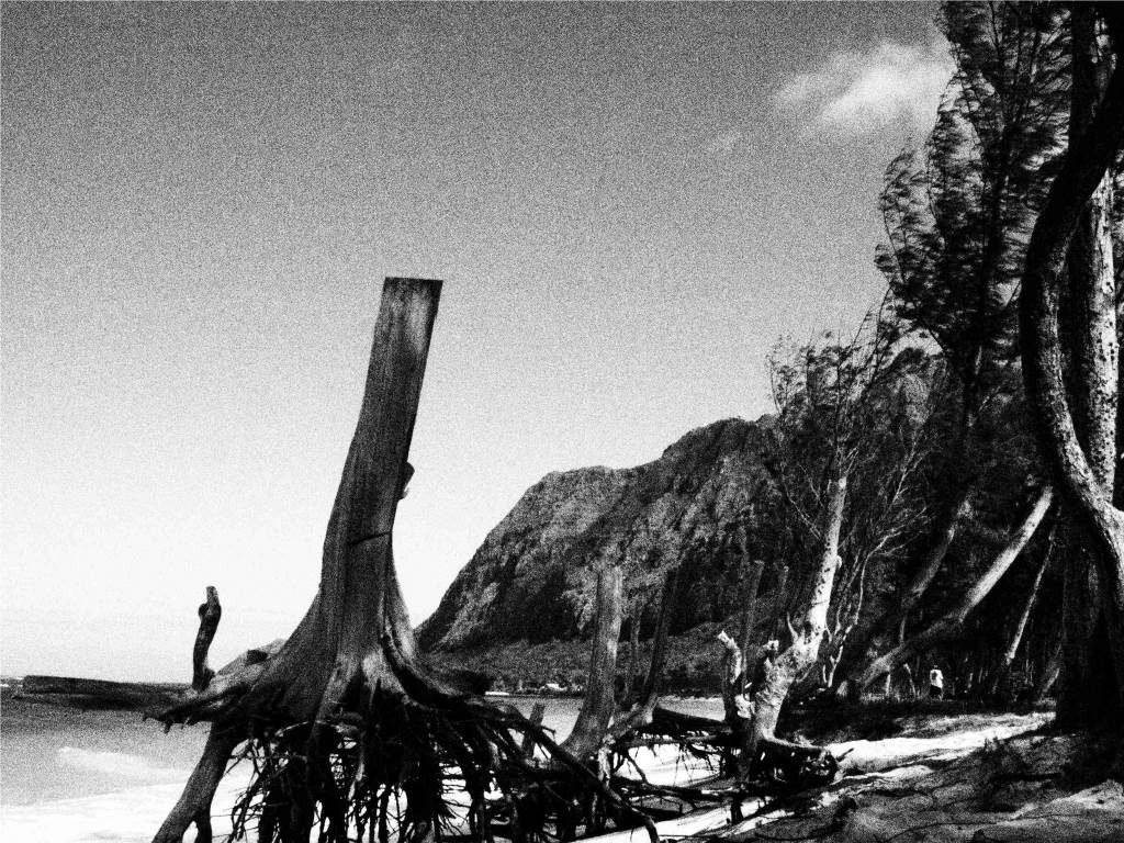 Waimanalo Beach view in black and white
