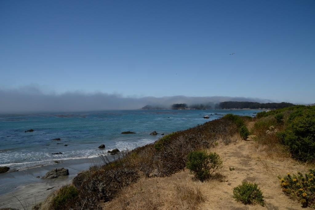 Elephant Seal Vista Point view to the north