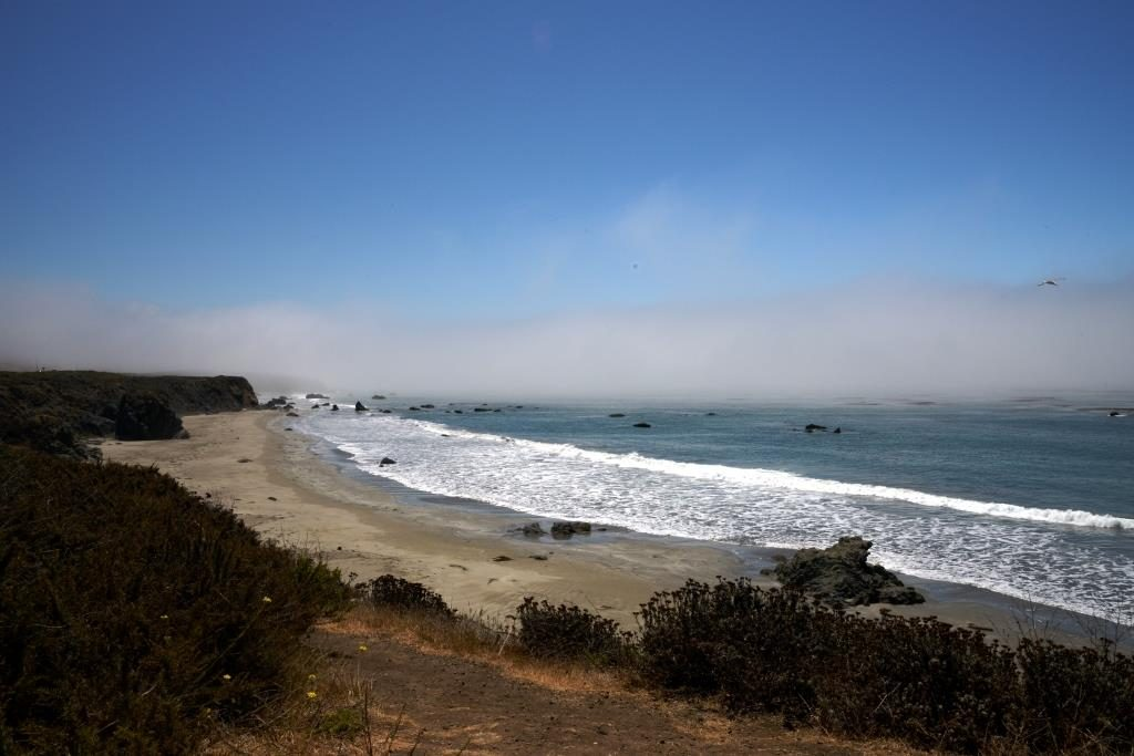 Elephant Seal Vista Point view to the south