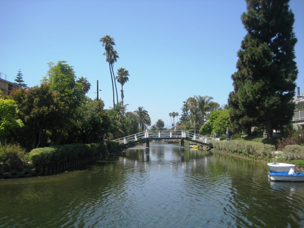 canal and palm trees at Venice Beach