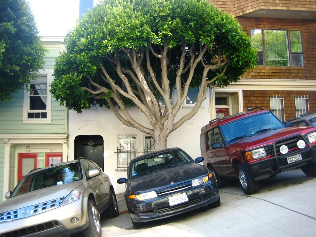 straight foto of perpendicular parked cars on steep street
