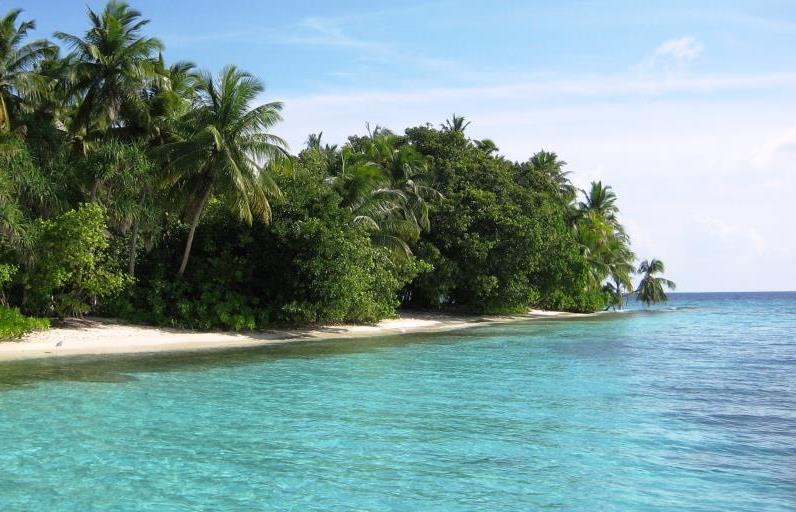 Beach on Fihalhohi Island, Maldives
