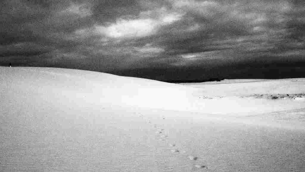 Sand Dunes near Corralejo