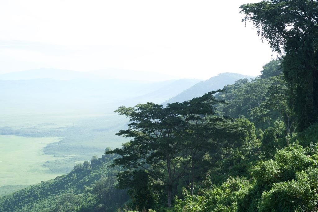 Ngorongoro Rim view