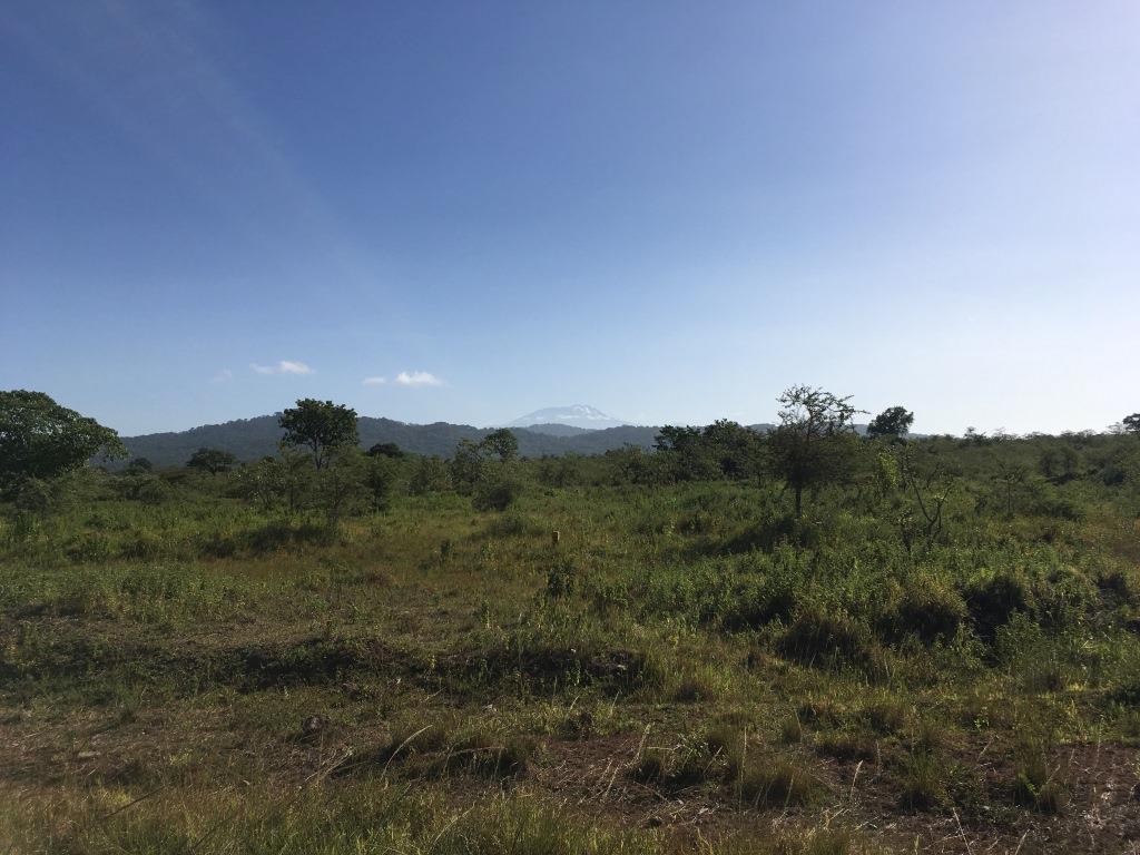 Kilimanjaro far away