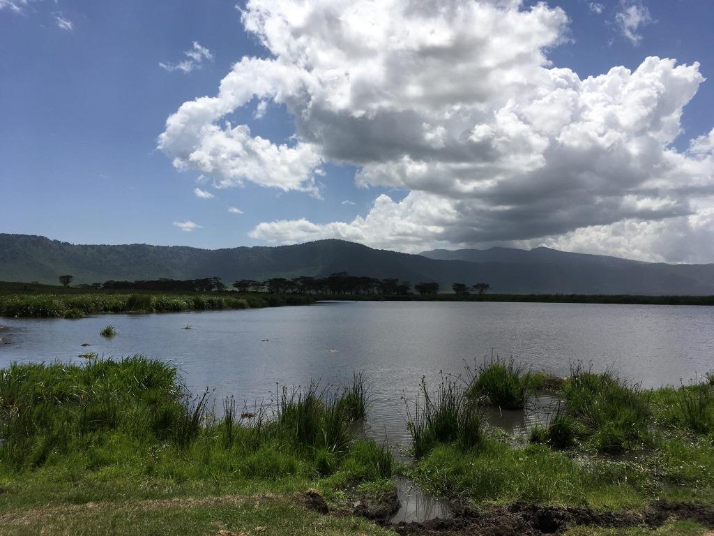 Ngorongoro picnic area