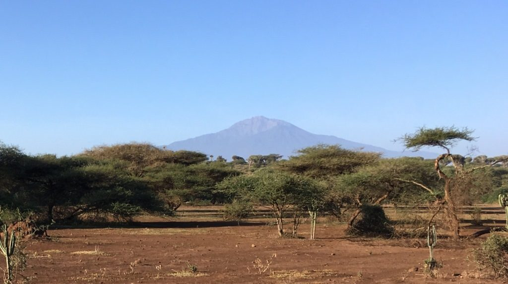 Kilimanjaro in the back