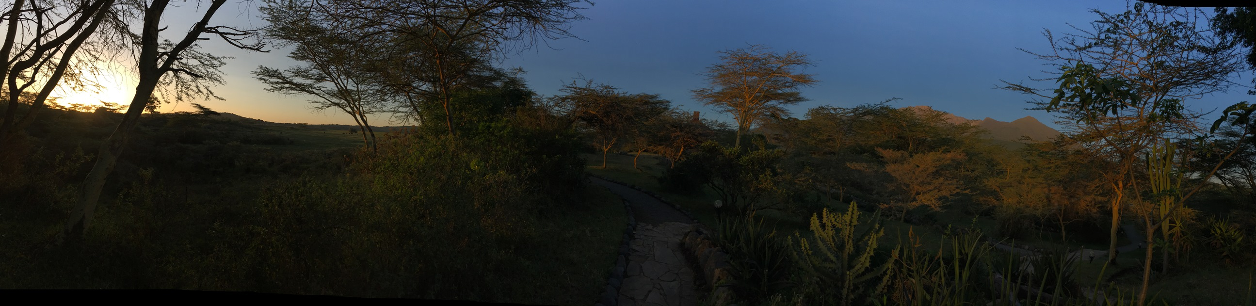 sunrise at Hatari