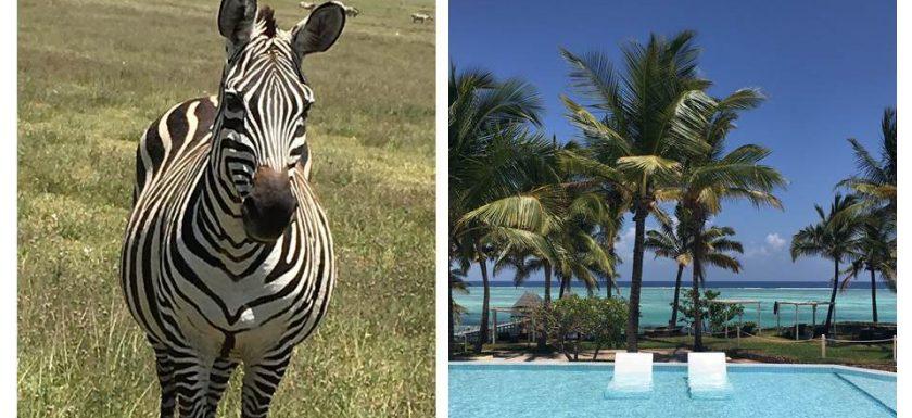 Tanzania - safari and beach