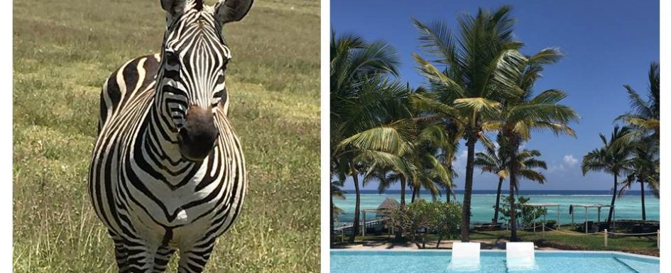 Tanzania - safari and beach