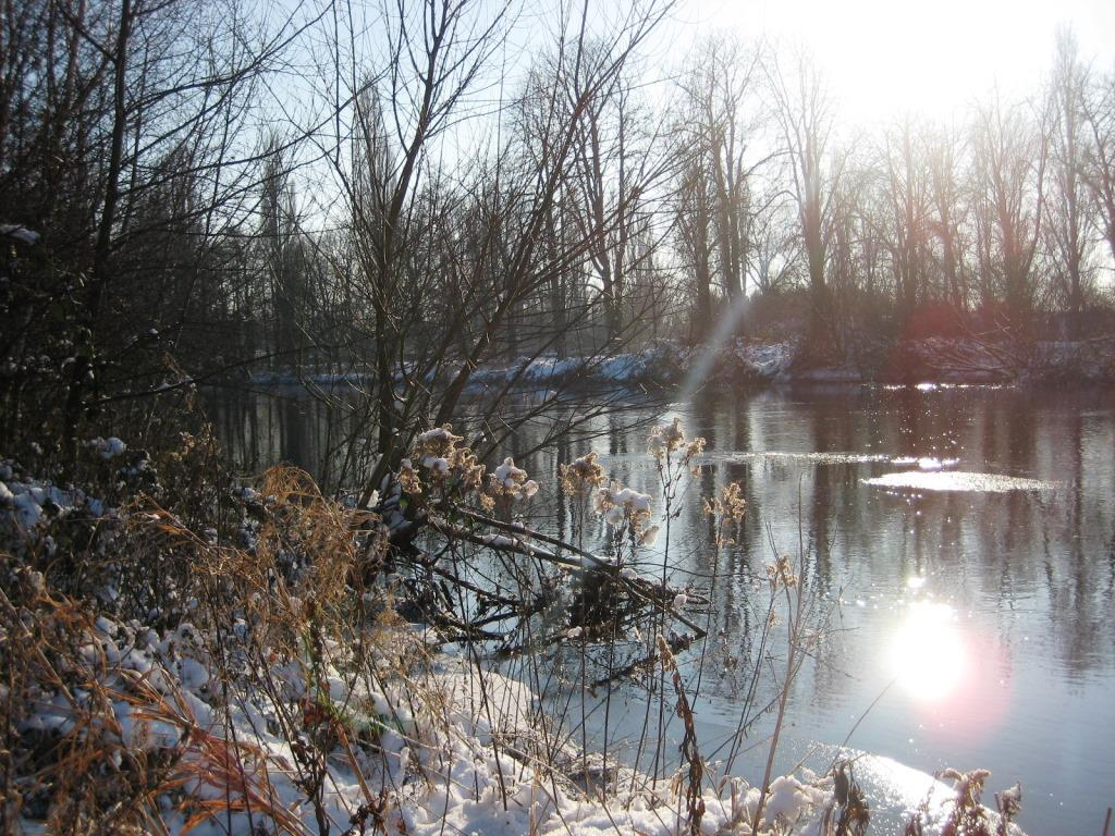 River Rur in winter