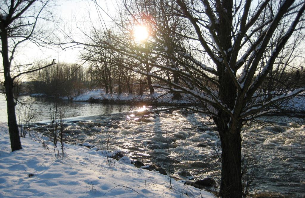 Rur river bank in winter
