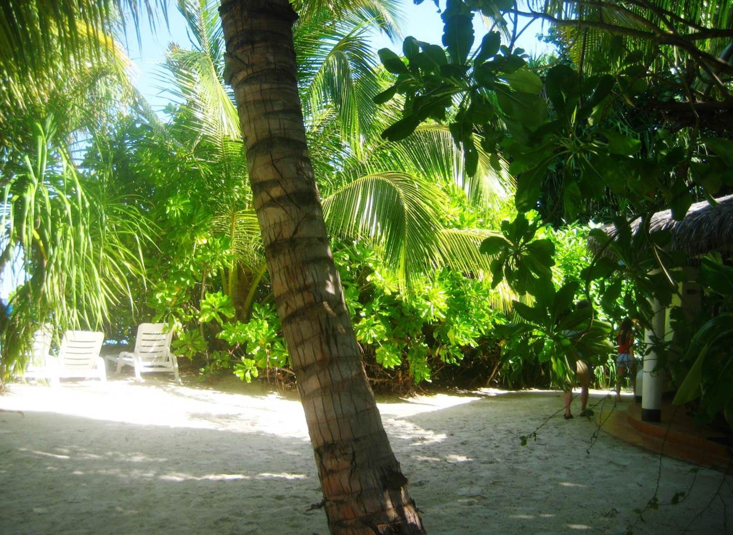 Velidhu hut and beach