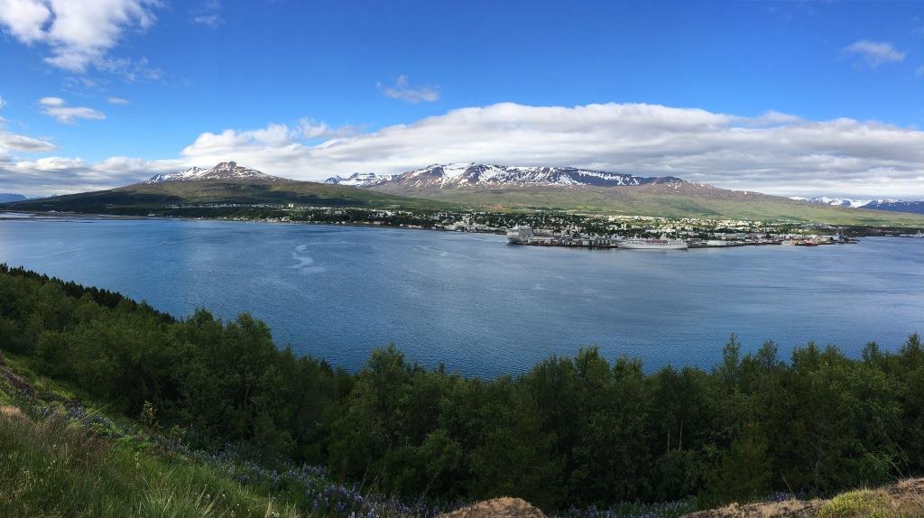 Husavik view
