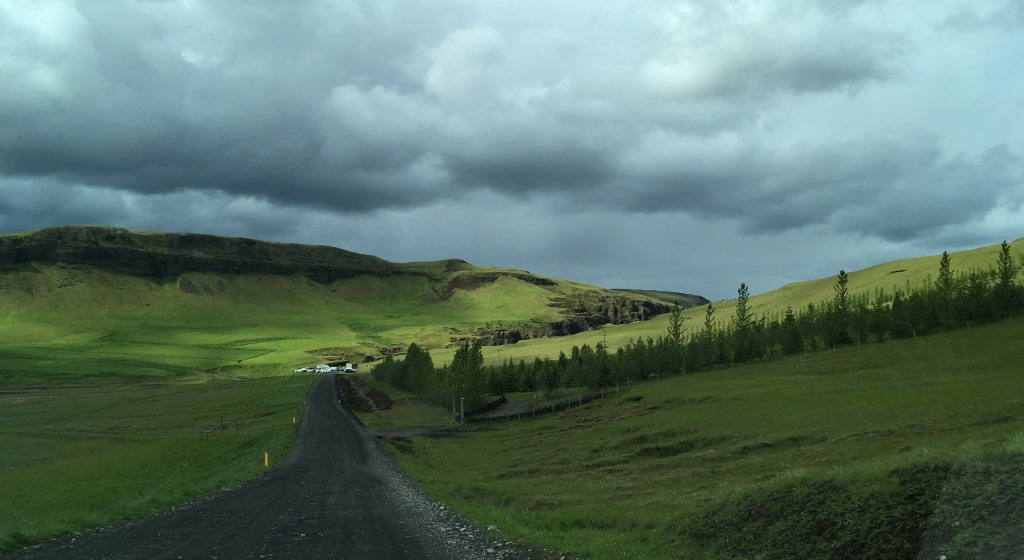green meadows in Iceland
